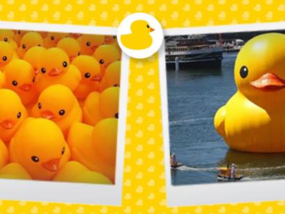 愛與和平的黃色小鴨